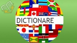 dictionare diverse limbi straine
